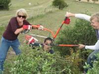 Highlight for Album: National Trust Community Team Build (5th August 2010)