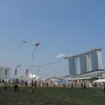 The Marina Bay Backdrop