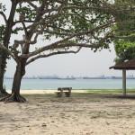 Interesting beach view, hey? :)