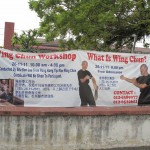 Yes what is Wing Chun?