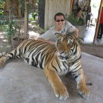My Tiger and Aaron