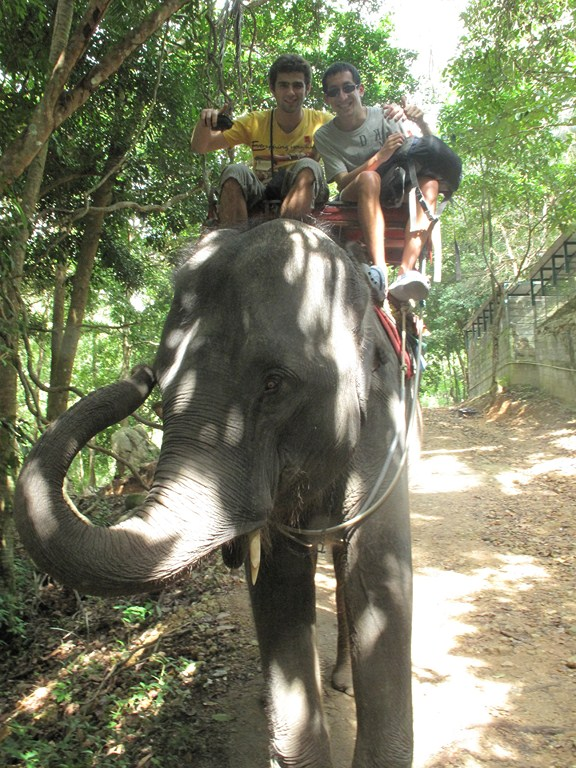 The Elephant Ride was Very Comfortable!