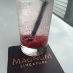 Magnum Pleasure Store Singapore