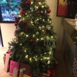 Christmas in a Tropical Climate